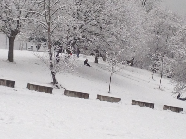 Sledding in Riverview